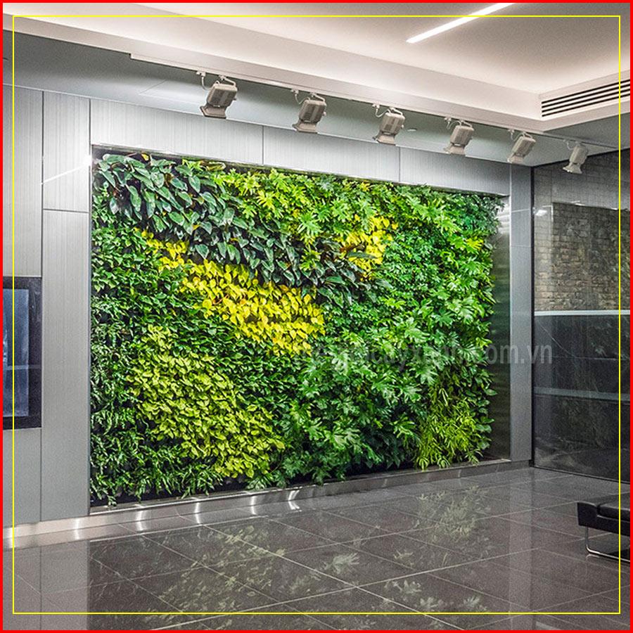 công ty tường xanh việt